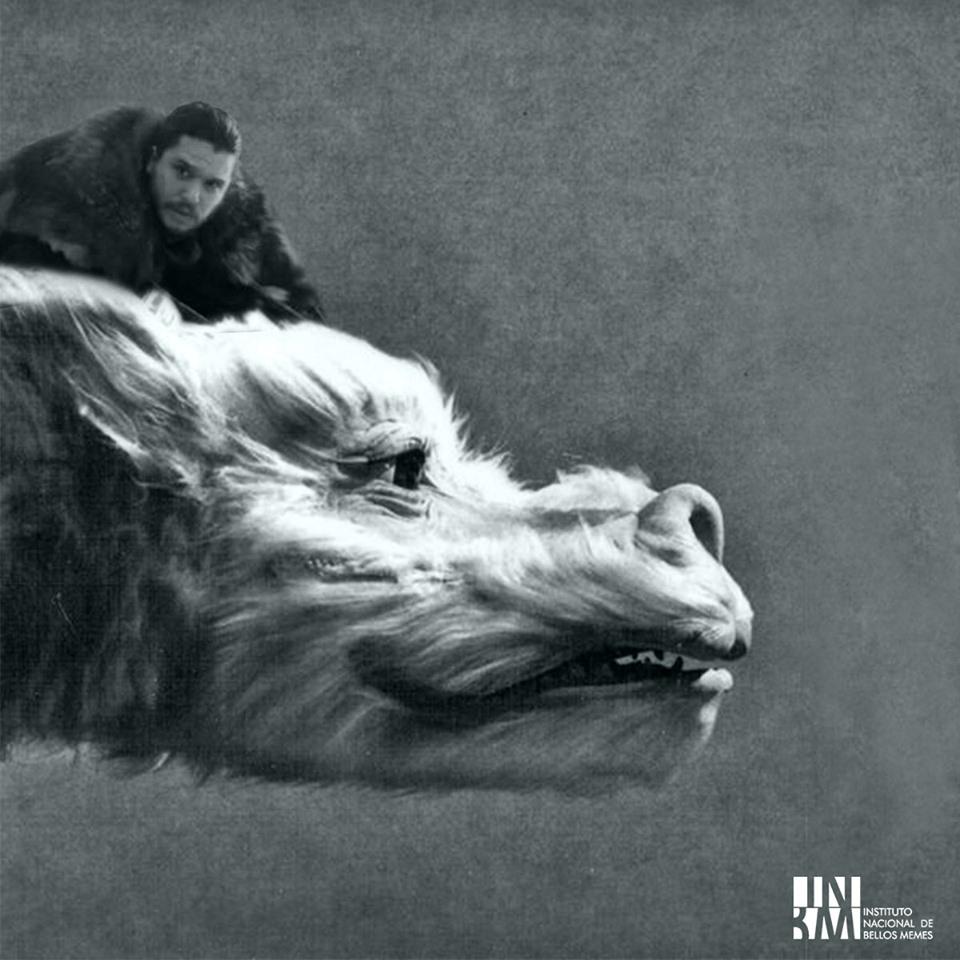 Meme – Series contemporáneas – GOT Jon Snow Falkor